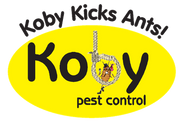 Koby Kick's Ants
