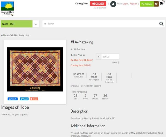 Images of Hope Quilt Auction Bidding page
